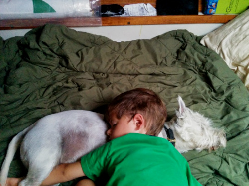 With two dogs and a little boy, sleeping is a favorite activity on board.